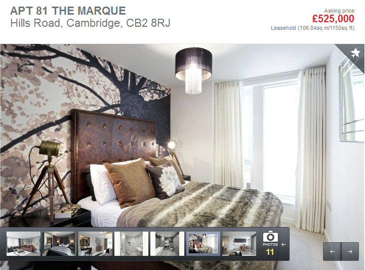 TheMarque1.jpg